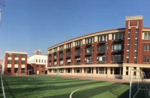 Maple Leaf International School